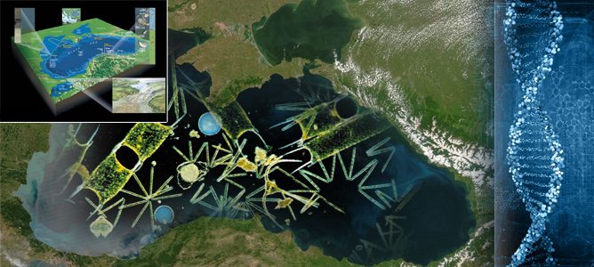 black sea holds genetic data record