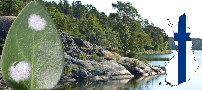 finlands plant ecology
